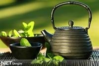 Hangi Bitki Çayı Hangi Hastalığa İyi Geliyor?