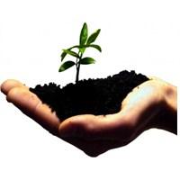 Bir Girişimi Başarıya Taşımanın 5 Altın Anahtarı
