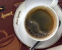 Dünyanın En Pahalı Kahvesi Kedi Dışkısından