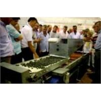 Bursalı Çiftçinin Zeytin Ayırma Makinesi İcadı