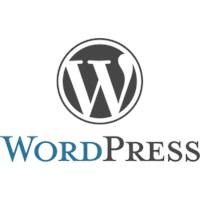 Wordpress Sayfasına Reklam Koyma