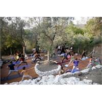 Kaz Dağları'nda Eko-yoga