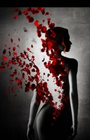 Koku : Bir Katilin Hikayesi