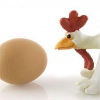 Yumurta Mı Üniversiteden, Üniversite Mi Yumurtadan