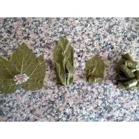 Etli Yaprak Sarma - Yaprak Nasıl Sarılır?