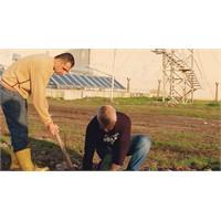 Cezaevlerinde Tarım Eğitimi Verilecek