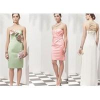 Roman Abiye Elbise Modelleri 2013