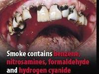 Sigara Paketlerinde Bu Görseller Kullanılacak-vide