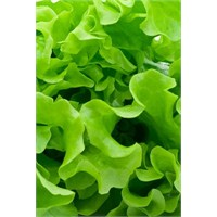 Sivilceleriniz İçin Yeşil Sebzeler
