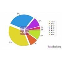 Facebook Türkiye İstatistikleri