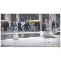 İstanbul'a Kar Düşünce!..