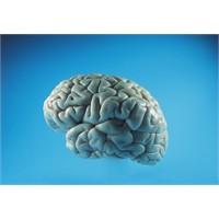 Beynimiz Kendimizi Nasıl Değerlendirir?