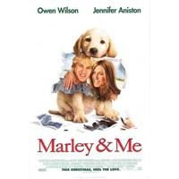 Alt Tarafı Bir Köpek!… : Marley & Me