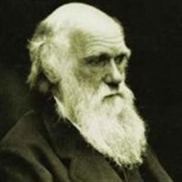 Darwin'in Kökenini Tespit Ettiler