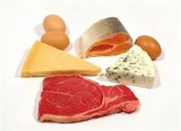Protein Nedir, Ne İşe Yarar?