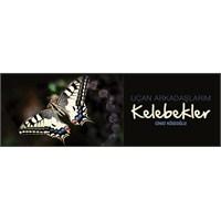 Cihat Köseoğlu'ndan Kelebekler Sergisi