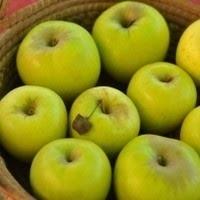 Organik Gıda Nedir? Hangi Ürün Organiktir?
