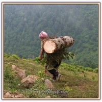 Karadeniz Kadını   Karadeniz Türkülerinde Kadın