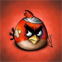 Yaralı Kızgın Kuşlar