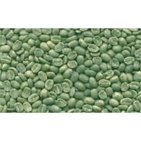 Yeşil Kahve Çekirdekleri İle Zayıflayın