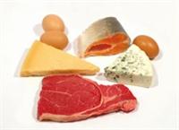 Temel Besinler - Protein