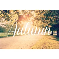 Mim #5 - Sonbaharı Seviyorum