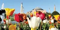 İstanbulda Lale Keyfi Bir Başka