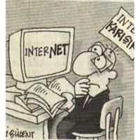 Türkiyede İnternet Kullanıcısı Sayısı 1000