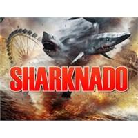 Sharknado : Sepra Peratus
