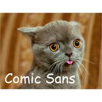 Yazı Karakterleri Ve Kediler