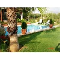 Antalya'da Doğayla İç İçe Bir Ev