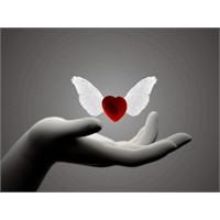 Sevmeyi Unutmamak