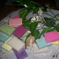 Bitki Sabunları