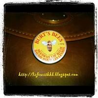 Burt's Bees Bees Wax Lip Balm