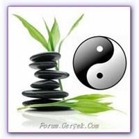 Feng Shui Nedir | Hakkında Bilgiler