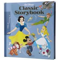 Bir Buruk Disney Hikayesi