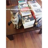 Okuma Halleri, Fotoğraflarla - Okumak, Yazmak Ve Y