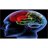 Cinsel İlişkide Beyin Ne Tepki Veriyor?