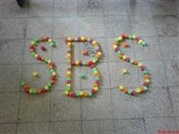 Sbs yi Kazanamamışların Dikkatine!!!