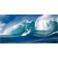 Denizleri Temizlemek İçin 4 Öneri