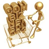 En Ünlü Domain Firmaları