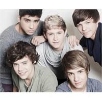 One Direction Üyeleri İnanılmaz Bilgiler