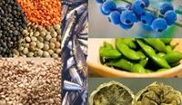 Erkek Sağlığını Koruyan 6 Yiyecek!