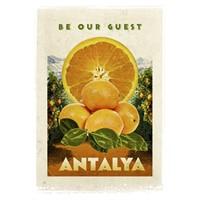Türkiye Posterleri: Antalya