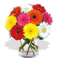 Vazoda Çiçek Bakımı Nasıl Yapılmalı?
