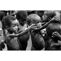 Afrika'ya (Somali) Yardım Kampanyası...
