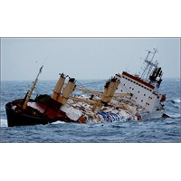 Deniz Raporu Nedir?