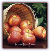 Elma Sirkesinin Güzelliğinize Faydaları Nelerdir?