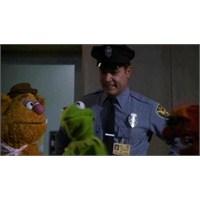 """Ray Liotta, """"Muppets""""ın Devam Filminde"""