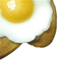 Donuk Zekalılığa Karşı Yumurta